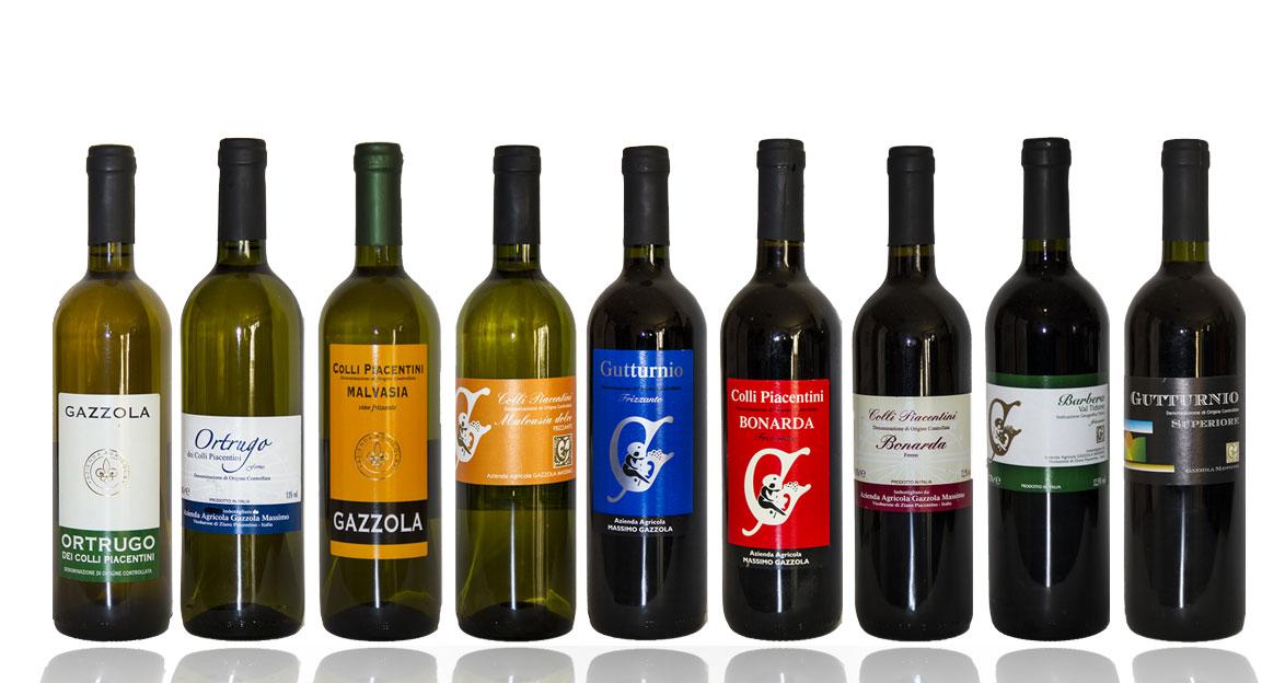 I vini di Massimo Gazzola
